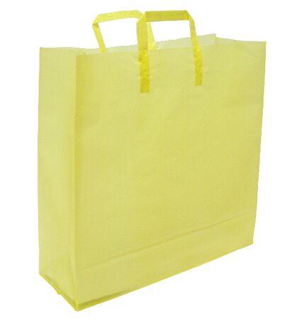 Plastic Shopping Bags Retail Bags Store Shopping Bag